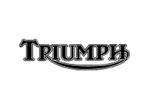 triumph_203x150